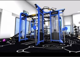 Fitness Rig