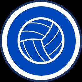 Hull Sport Netball Icon